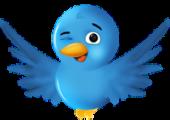 Aprenda a usar o Twitter