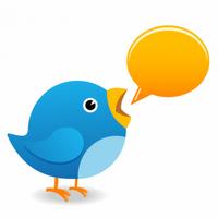 Crie enquetes no Twitter e aumente sua influência na rede